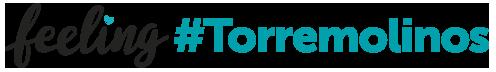 Logo-feelingtorremolinos